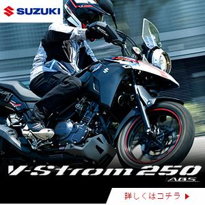 suzuki_dl250rlzm0
