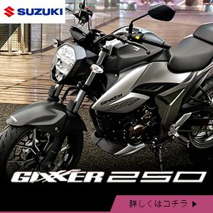 suzuki_gsx250rlm0