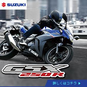 suzuki_gsx250rzm0