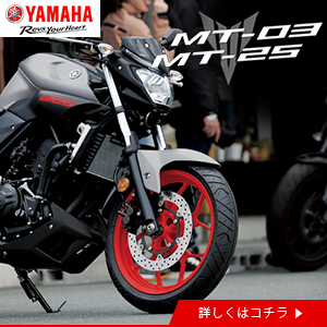 yamaha_MT-25MT-3